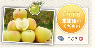 本家園の果物